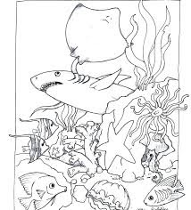 Printable Ocean Animals Stingrays Coloring Sheet