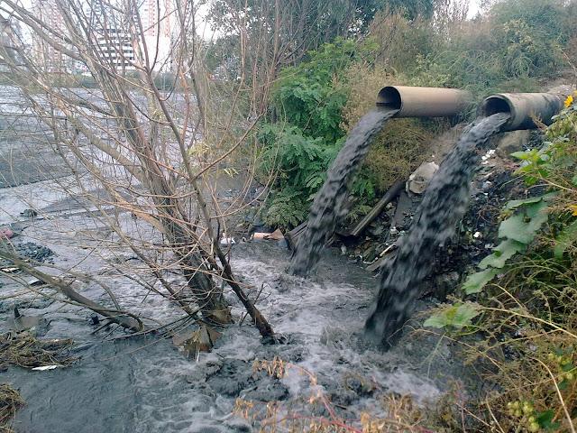 отходы ТЭЦ сбрасывают в озеро Горячка