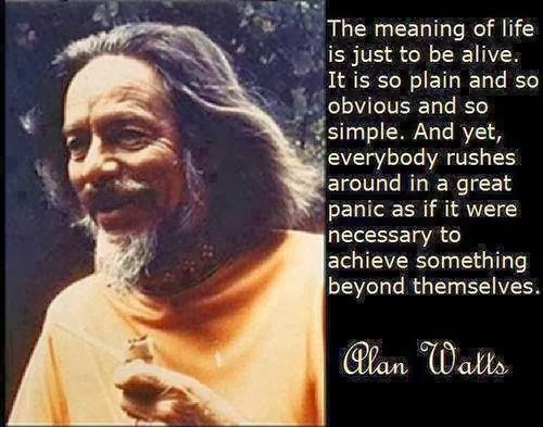 The Monkey Buddha: The Meaning of Life by Alan Watts