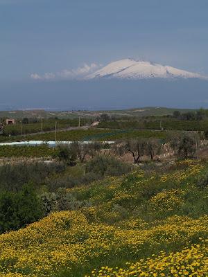 Etna volcano in spring