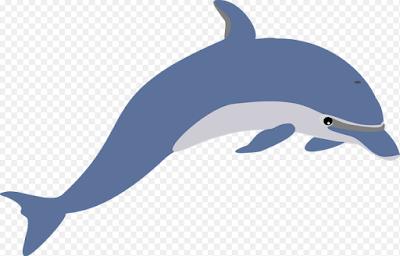 http://www.katabijakpedia.com/2017/05/contoh-report-text-about-dolphin-bahasa-inggris-dan-terjemahannya-update-terbaru.html