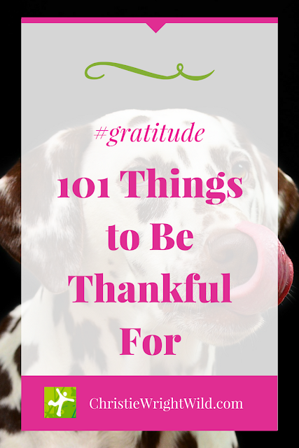 Gratitude rocks || what are people thankful for | what do writers love | how to celebrate your 101st blog post