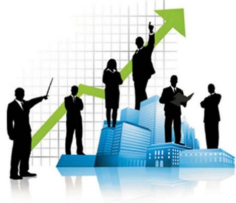 Fungsi Sistem Manajemen Nasional
