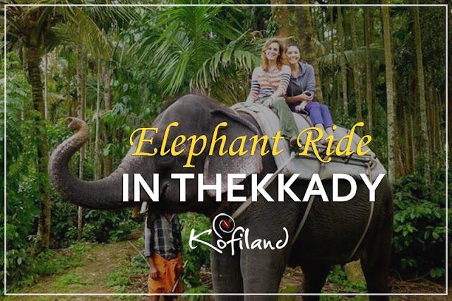 Resort in Thekkady