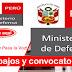 TRABAJOS EN EL MINISTERIO DE DEFENSA - MINDEF