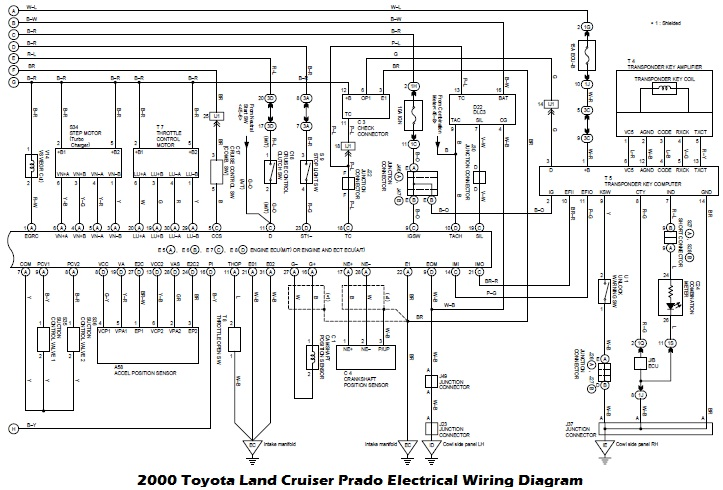 Wiring Diagrams  2000 Toyota Land Cruiser Prado Electrical Wiring Diagram