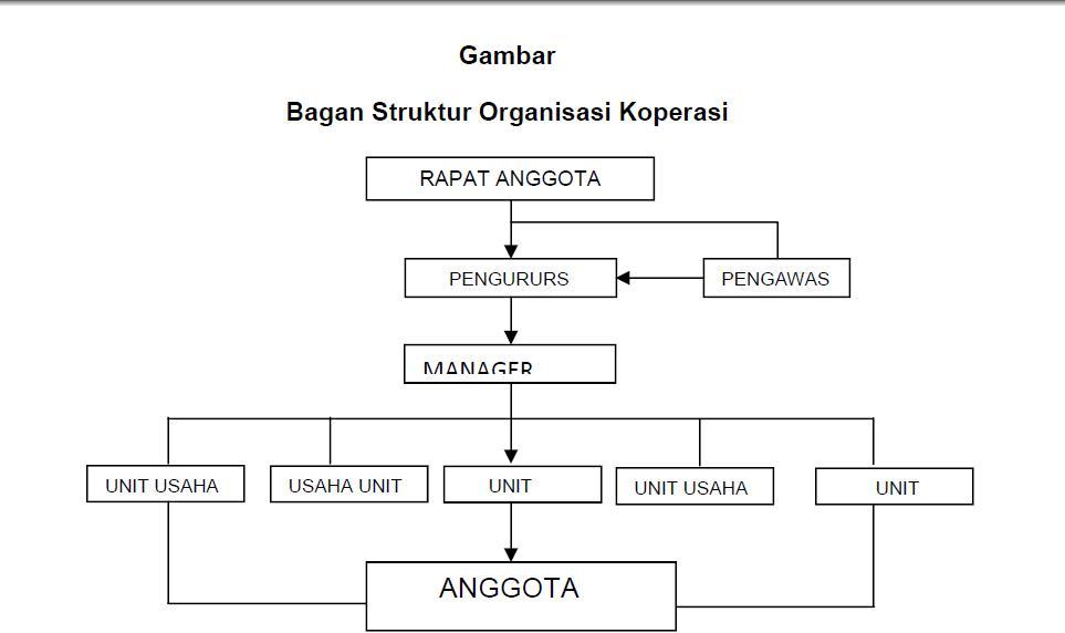 Pengertian, Struktur dan Ciri - Ciri Organisasi Koperasi