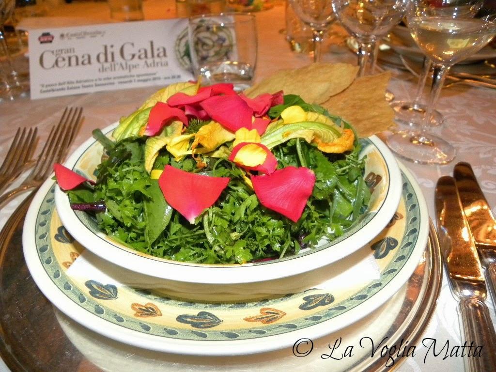 Castelbrando misticanza con 16 erbe e piante aromatiche