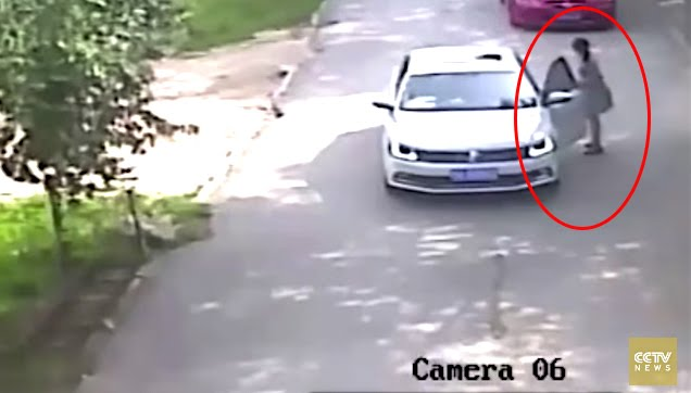 Woman dragged by a tiger in Beijing