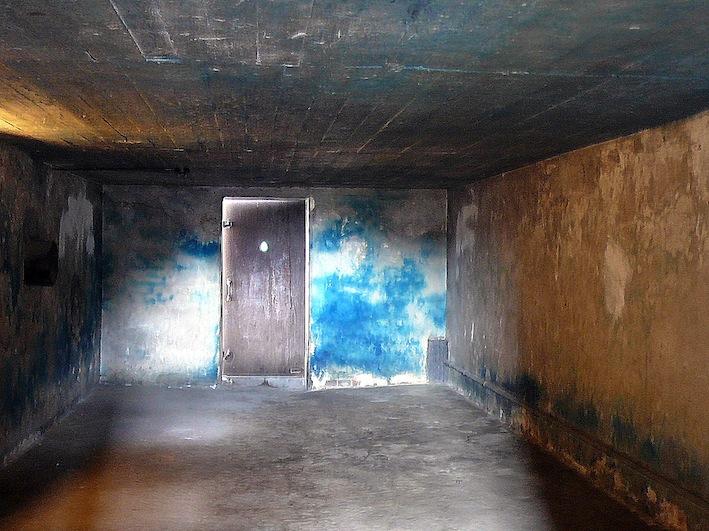 Down north traces - Existence des chambres a gaz ...