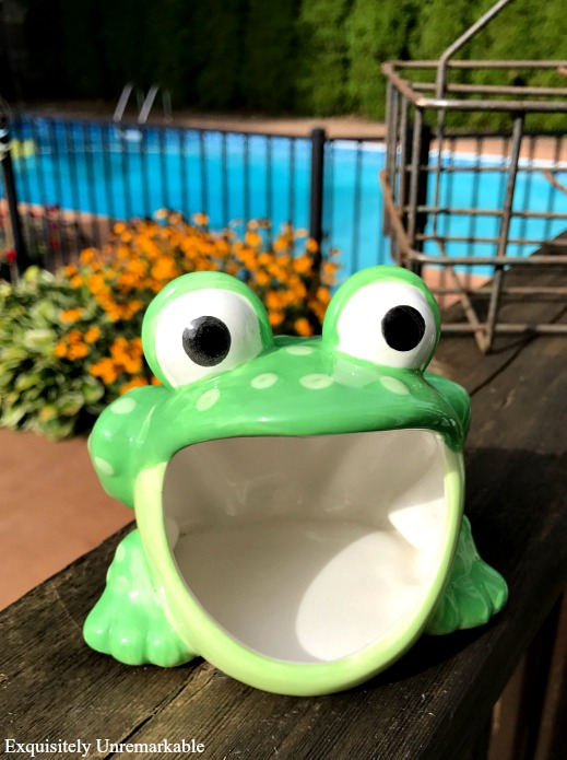 Thrift store frog scouring pad holder turned garden planter.