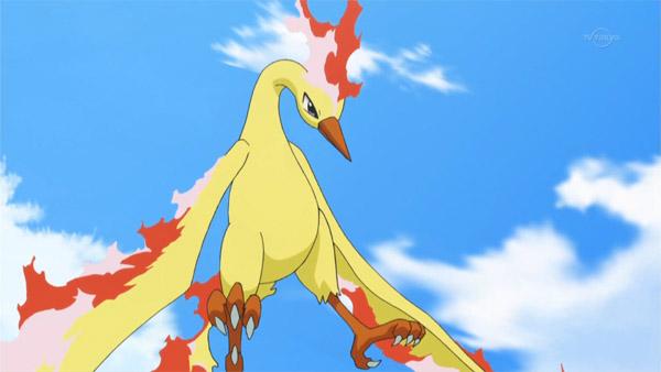 Ontem iniciou as Raids de Moltres em Pokémon GO, por isso vamos lhe ajudar a capturar a lendária ave de fogo.