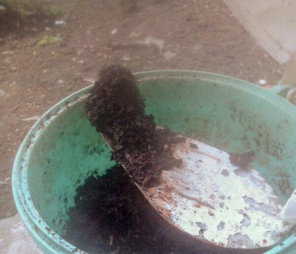 kompos rumahan