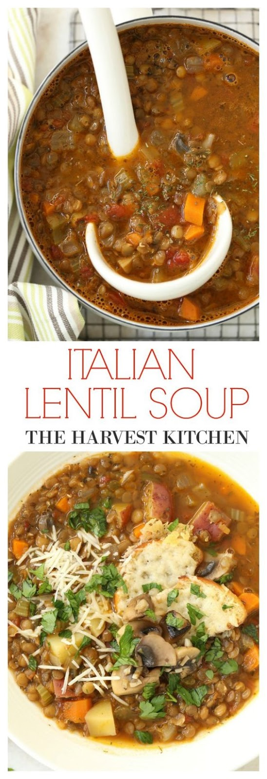 The recipe for this rich and hearty Italian Lentil Soup requires very little time, start to finish, and it takes advantage of lentils luscious state of tenderness. This is a humble soup made with the