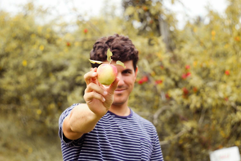 apple picking, stone ridge new york, matt degreff