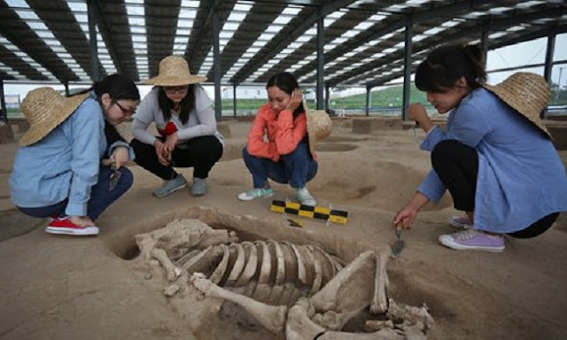 Human remains, pottery found in China's 4,000 year old Dongzhao Ruins