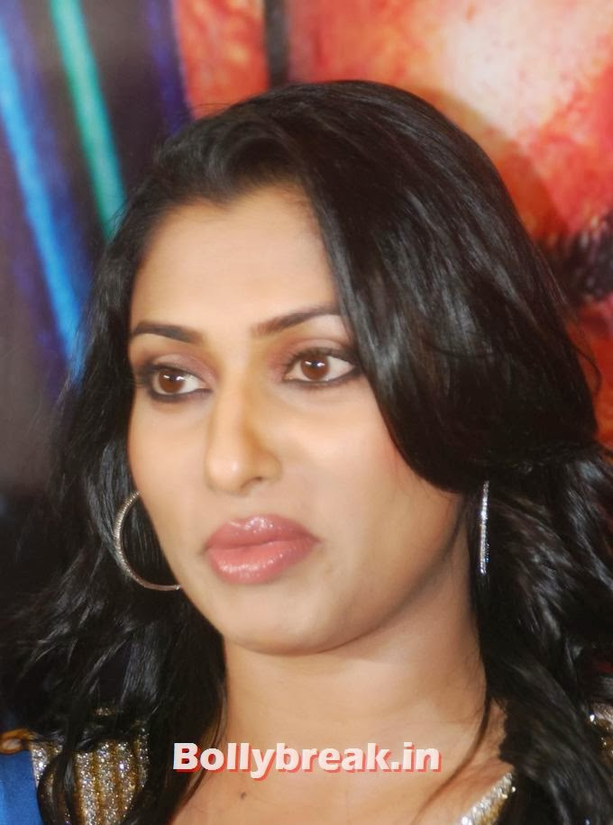 Malavika big lips, Malavika at India Sensation 2014 Press Meet