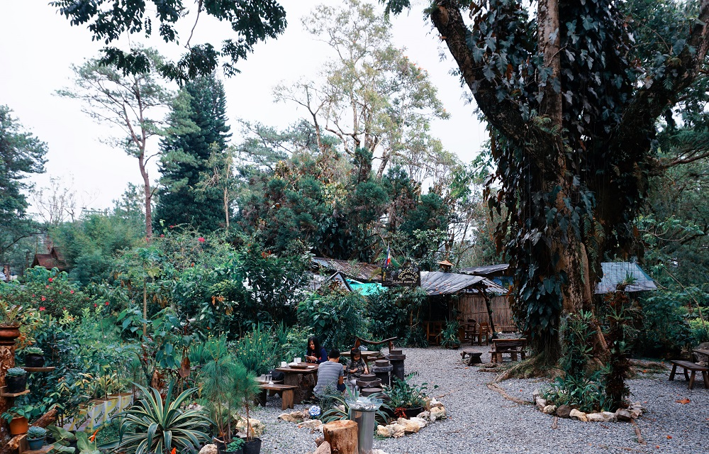 A Quick Guide to Baguio City, PH