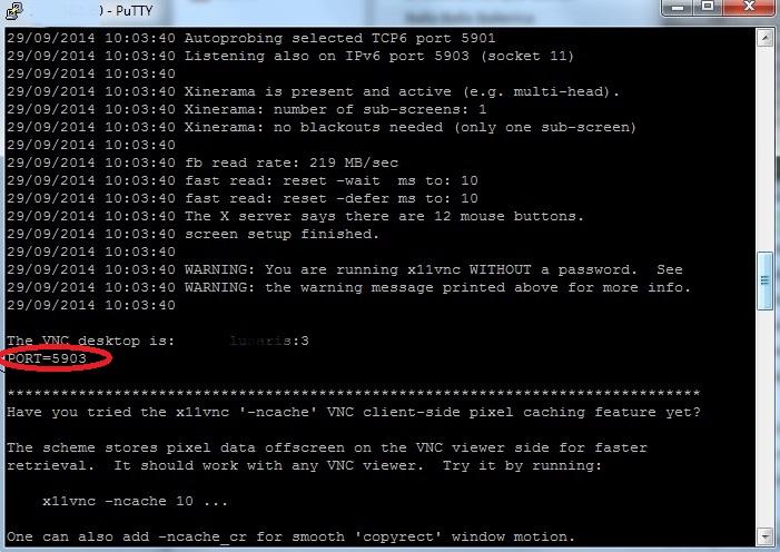 X11vnc for windows