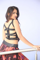Shriya Vyas in a Tight Backless Sleeveless Crop top and Skirt 104.JPG