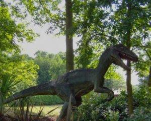 Робітник випадково знайшов яйця динозавра