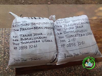 Benih pesana RENSON TAMPUBOLON Simalungun, Sumut.  (Sesudah Packing)