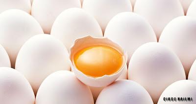 Putih Telur dan Kuning Telur : Mana Yang Lebih Sihat?