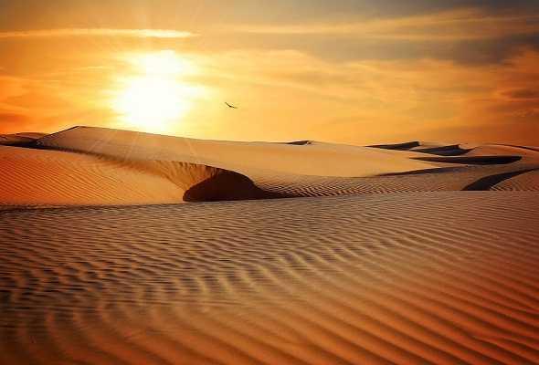what-is-Desert-Definition-ما-هو-تعريف-الصحراء