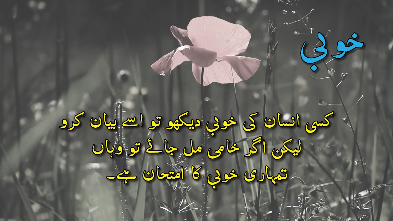 Bano Qudsia Dialogue Best Urdu Quotes Collection With Images Of Bano Qudsia Urdu