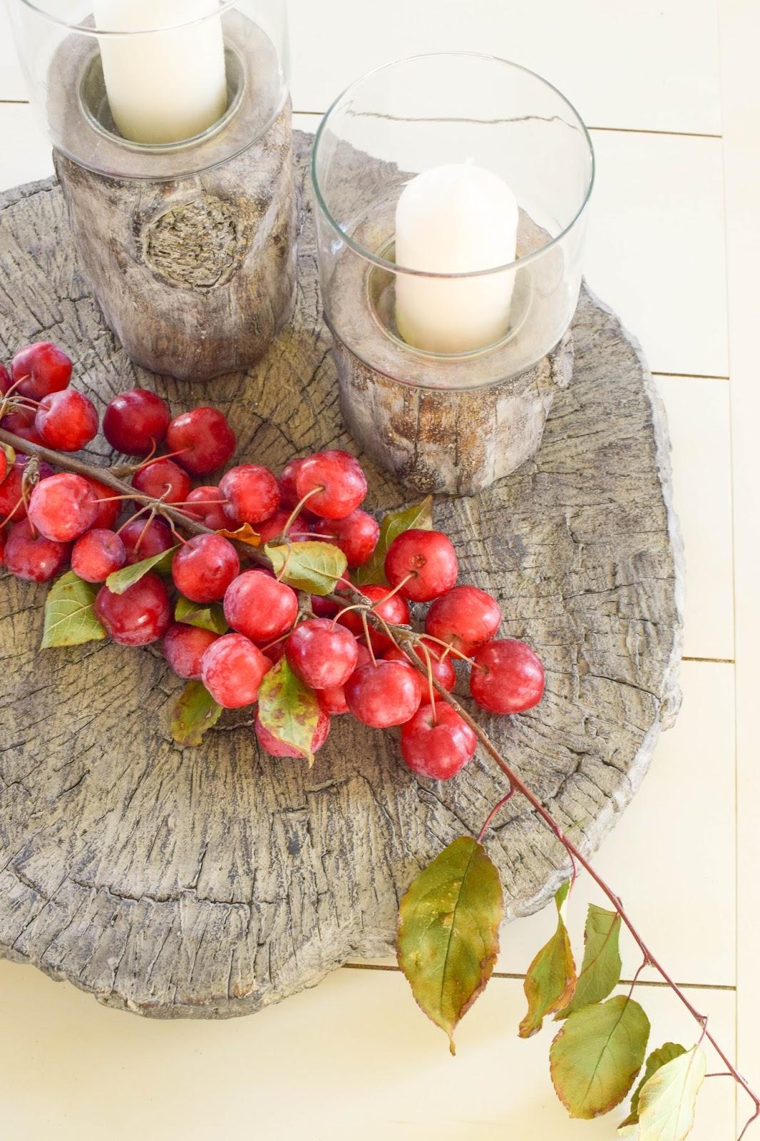 Dekoidee mit Zierapfel für Herbst- und Winter-Deko. Dekoration Holzscheibe Zement Naturdeko Windlicht
