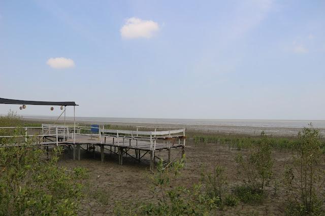 Membangun Potensi Pesisir dengan Mempawah Mangrove Park