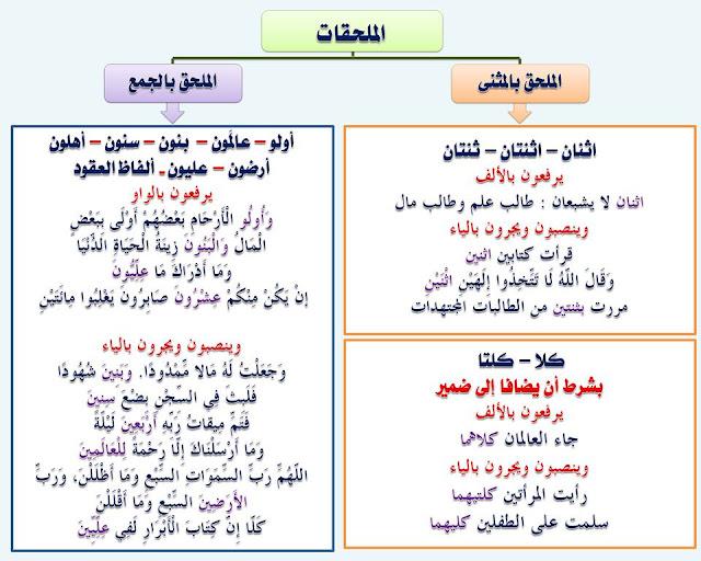 """انفراد.... كل قواعد اللغة العربية لطلاب """"ابتدائي - اعدادي - ثانوي"""" في صورة لوحات مبسطة مع الشرح والتدريبات 12"""