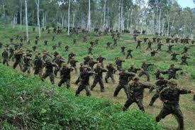 lực lượng Quân đội nhân dân Việt Nam