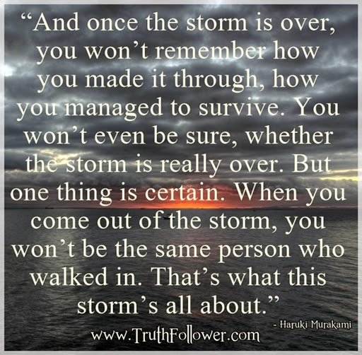 Once The Storm Is Over Storms Quotes By Famous Authors
