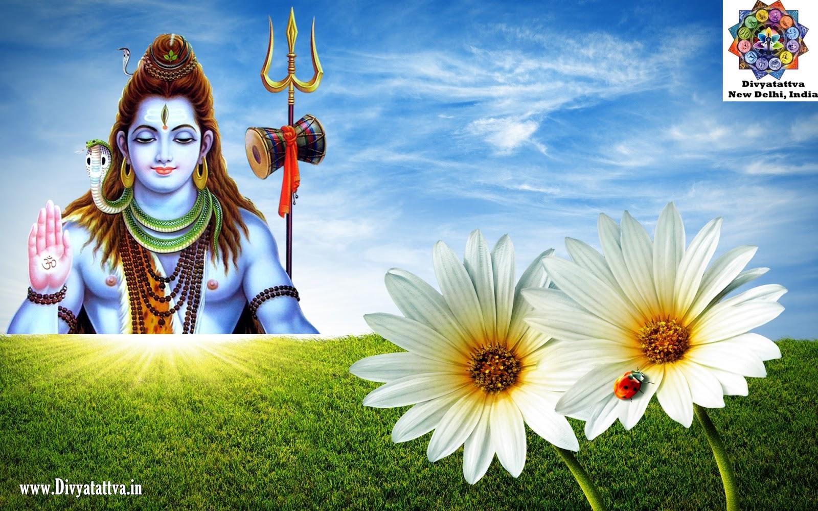 shiva pictures shivji photos hindu god indian gods wallpaper www.divyatattva.in