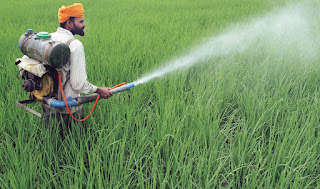 http://www.bizbilla.com/hotnews/CIBRC-to-assess-pesticides-usage-every-10-years-5168.html