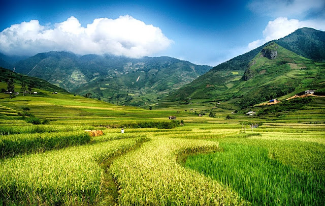 The Most Memorable Northwestern Vietnam Itinerary For 5 Days