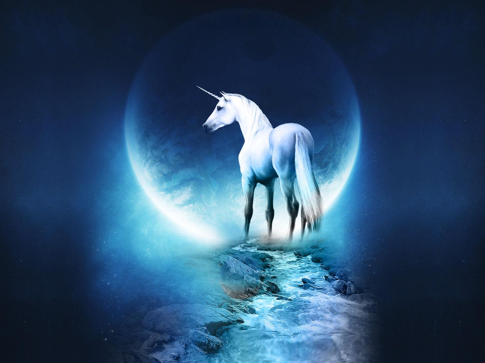 Best   Wallpaper Horse Unicorn - wHD7_Unicorn+Fantasy  Pic_288495.jpg