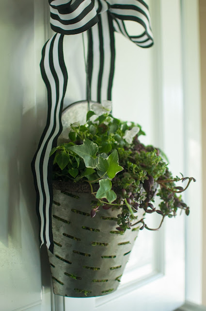 Olive bucket with fall greenery - Gwen Moss