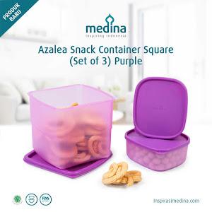 Azalea Snack Container Square (Set of 3) Purple