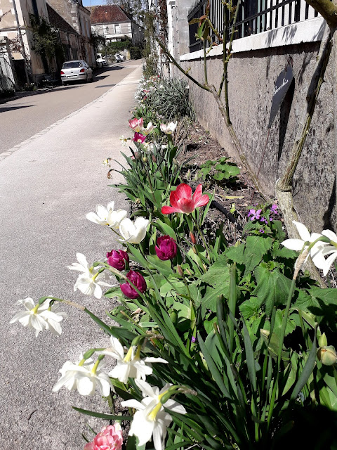 Spring flowers in the village of Chedigny