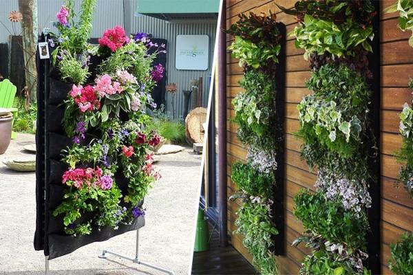 Diy Hiasan Dinding Luar Rumah Dengan Pelbagai Tanaman Bunga Malaysia