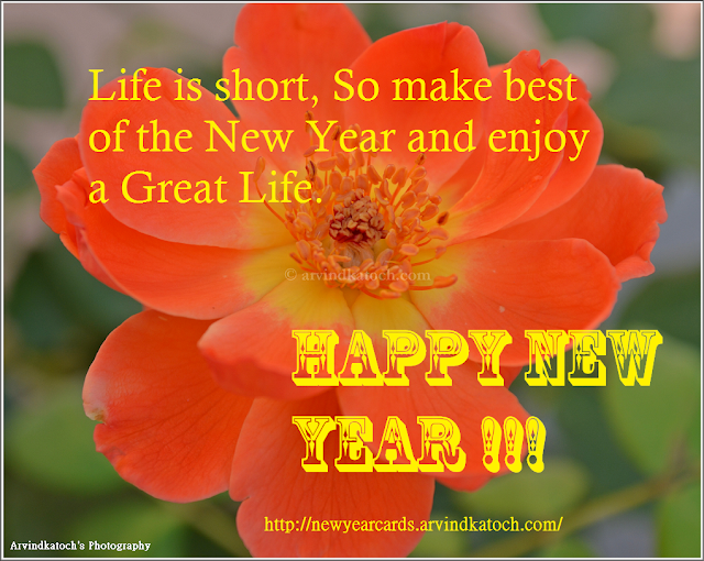 life, short, New Year, Great Life, Happy New Year, New Year Card