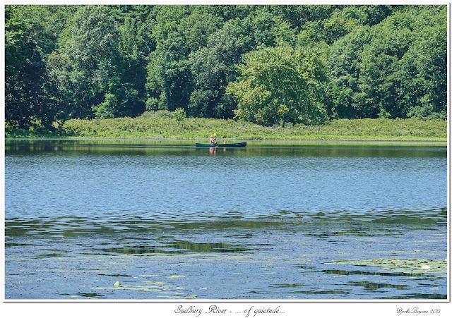 Sudbury River: ... of quietude...
