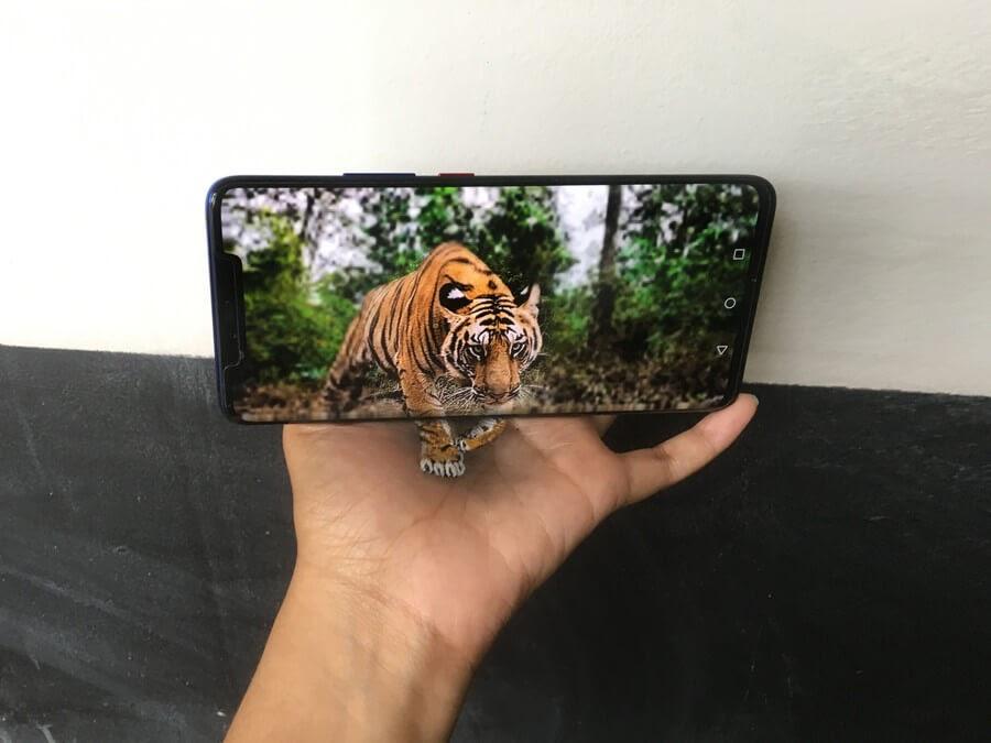 10-Tiger-Iantha-Naicker-3D-Art-www-designstack-co