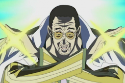Streaking Light Executables, these 10 facts About Admiral Kizaru!