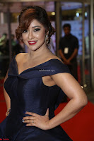 Payal Ghosh aka Harika in Dark Blue Deep Neck Sleeveless Gown at 64th Jio Filmfare Awards South 2017 ~  Exclusive 143.JPG