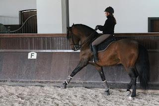 Portugal, Riitta Reissaa, Riitta Kosonen, ratsastusmatka, Horsexplore