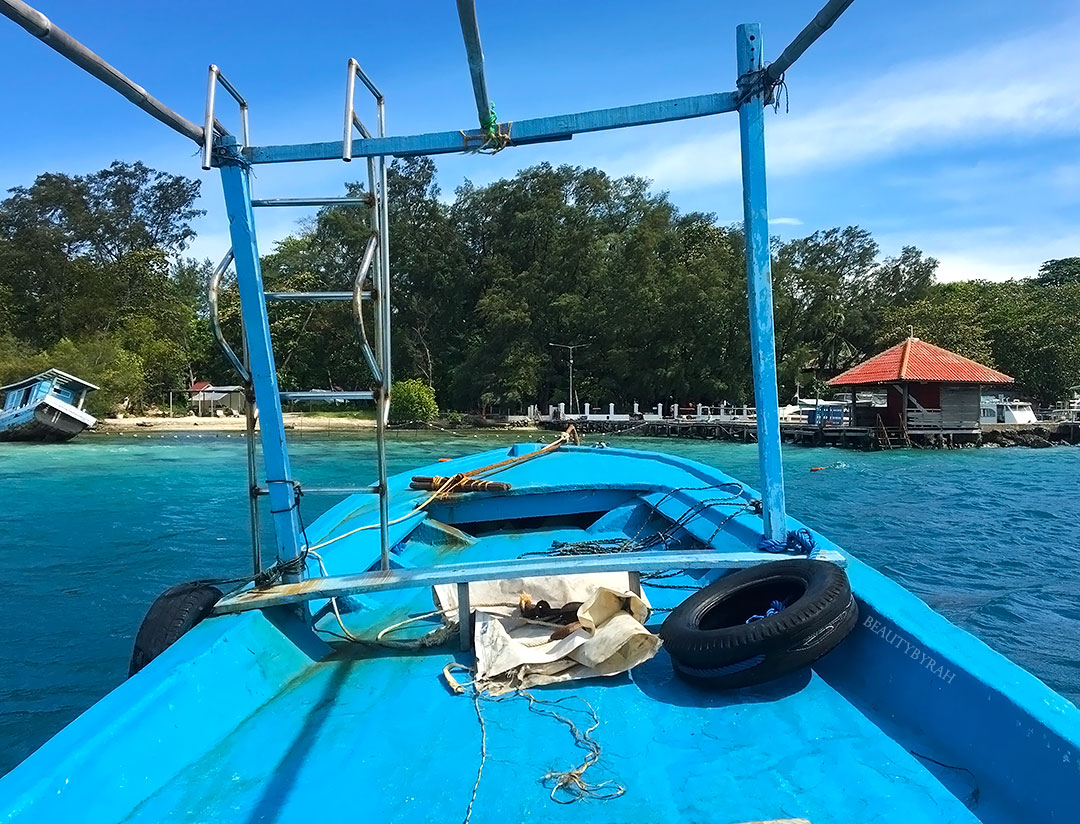 Thousand Islands Travel Guide snorkelling