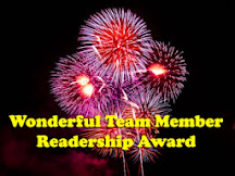 PREMIO WONDERFUL TEAM